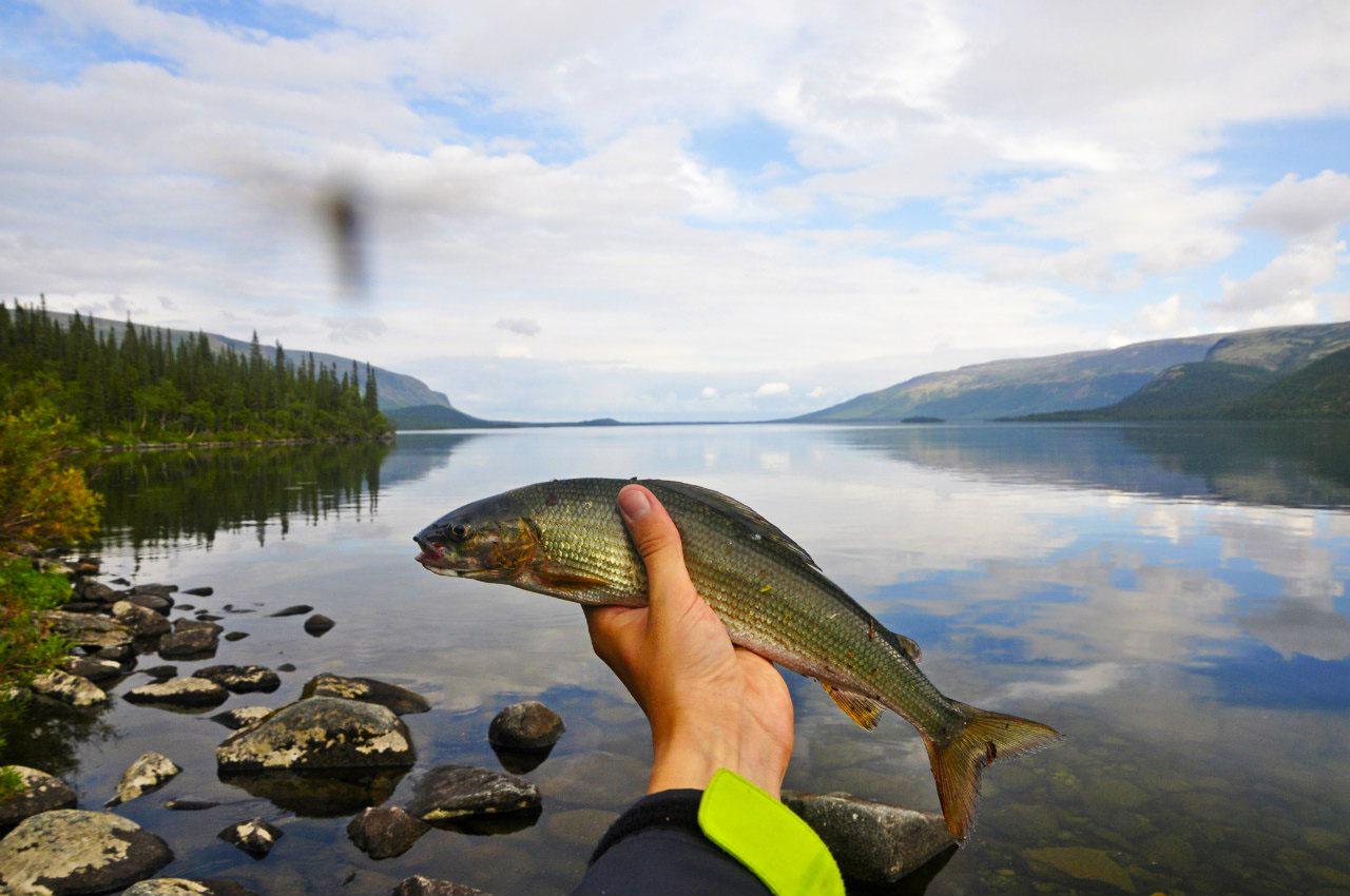 Мурманская область рыбалка на озерах