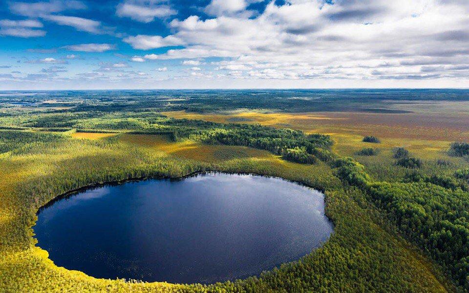 Васюганские болота. Фото с сайта - twitter.comKrasoti_Rossii