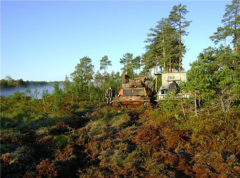 Васюганские болота. Фото с сайта - www.drive2.ru/l/9599685