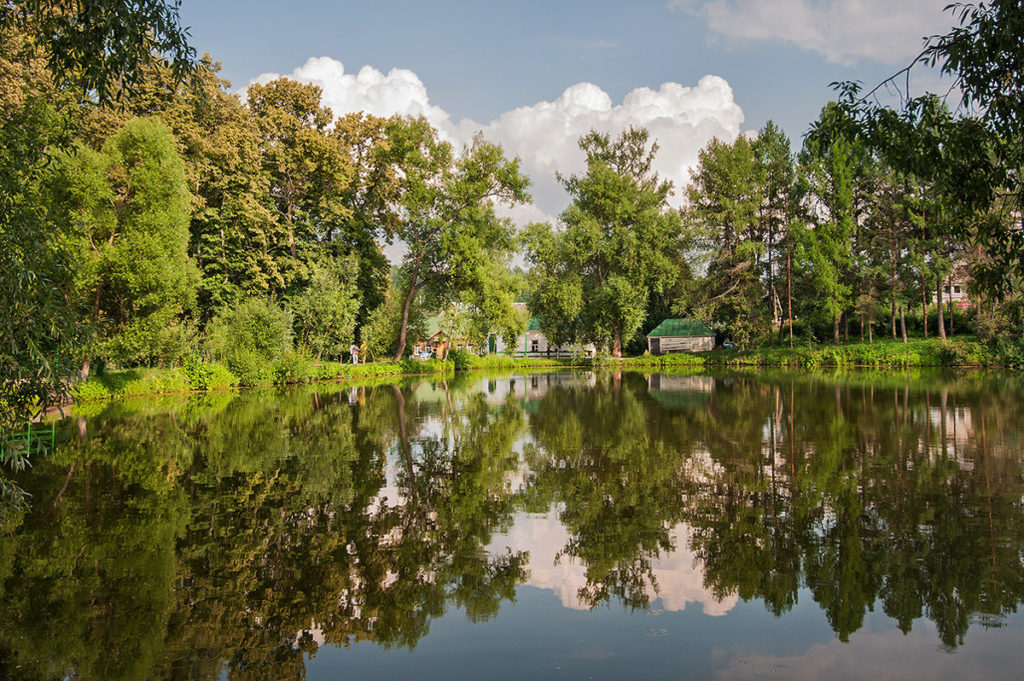 Большой пруд, Ясная поляна, Тульская область