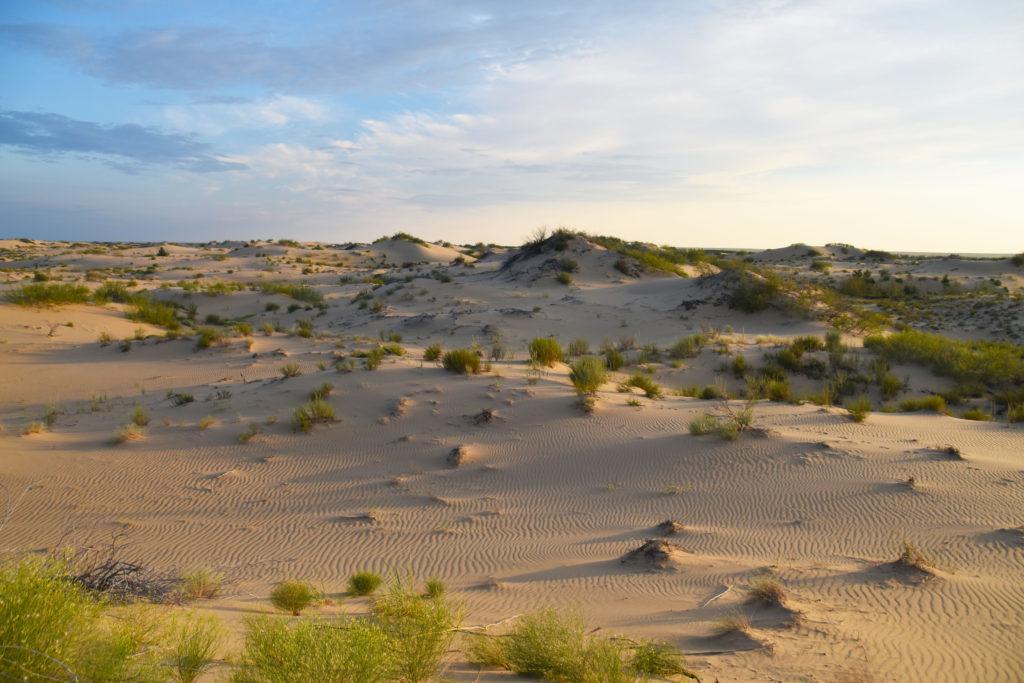 Батпайсагыр, пустыня Рын-пески, Астраханская область