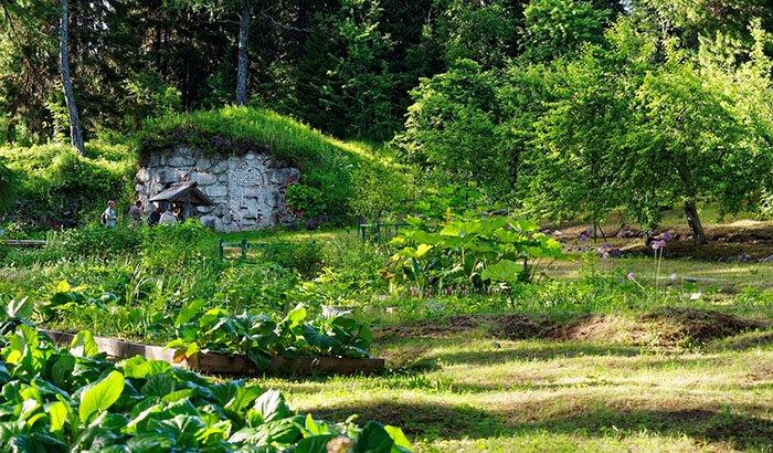 Ботанический сад, Соловецкие острова