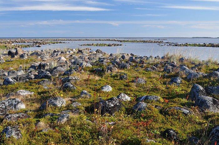 Остров Большая Муксалма, Соловецкие острова