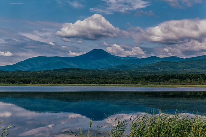 Сихотэ-Алинский природный заповедник, Приморский край