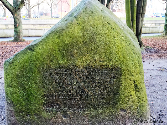 Памятный камень в честь закладки здания университета Альбертина, Калининград