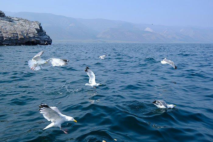 Озеро Байкал, Иркутская область