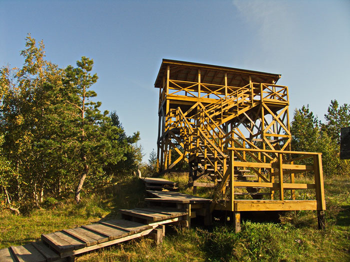 Высота Мюллера, Куршская коса, Калининградская область