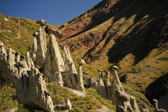 Каменные грибы, урочище Аккурум, Алтайский край