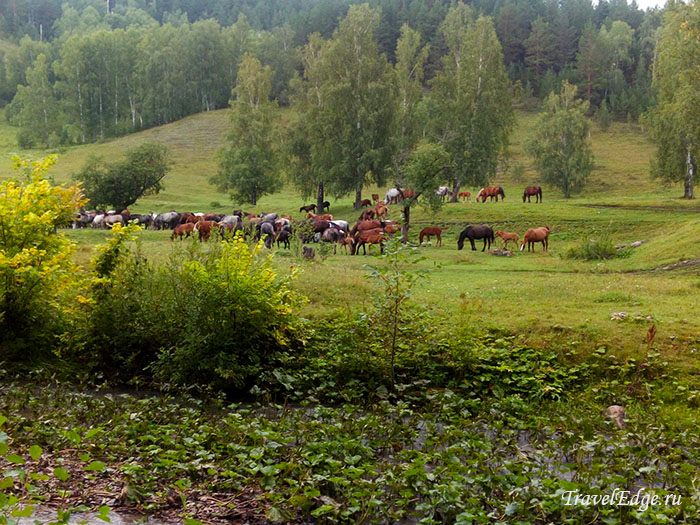 Сикияз-Тамак, Челябинская область