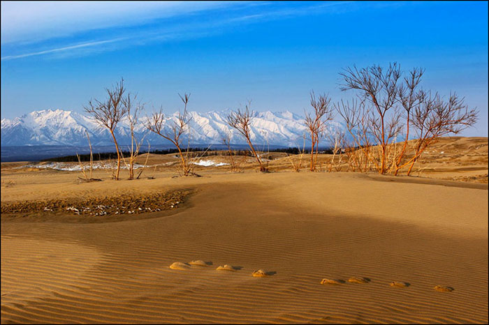 Чарские пески, Забайкальский край