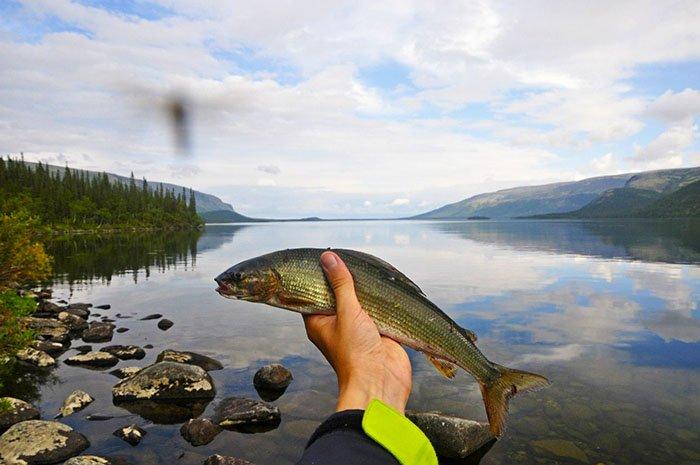 Рыбалка, Сейдозеро, Мурманская область