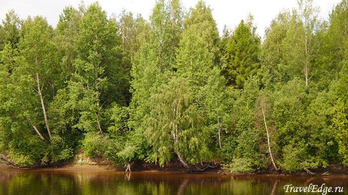 Природные пейзажи, Деревня Мандроги, Ленинградская область
