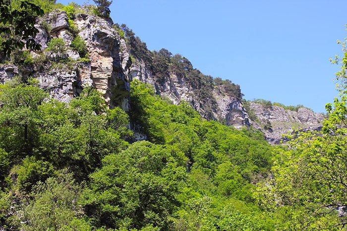 Окрестности Агурских водопадов, Сочи