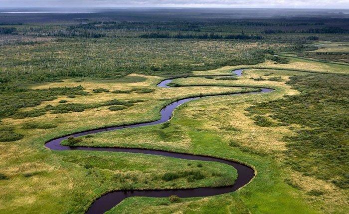 Васюганские болота