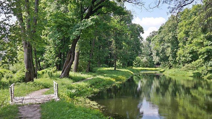 Нижний парк, Ясная поляна, Тульская область