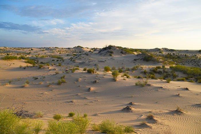 Батпайсагыр, Рын-пески, Астраханская область