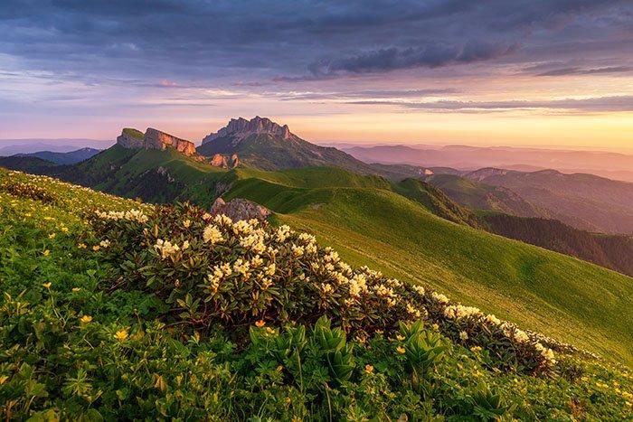 Большой Тхач, растительный мир