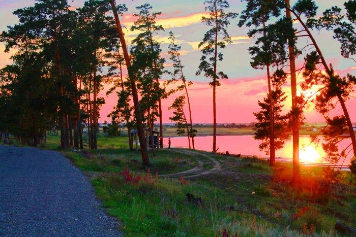 Лес Малинового озера,  Алтай