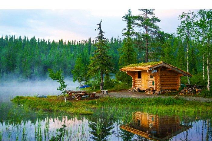 Домик возле болота