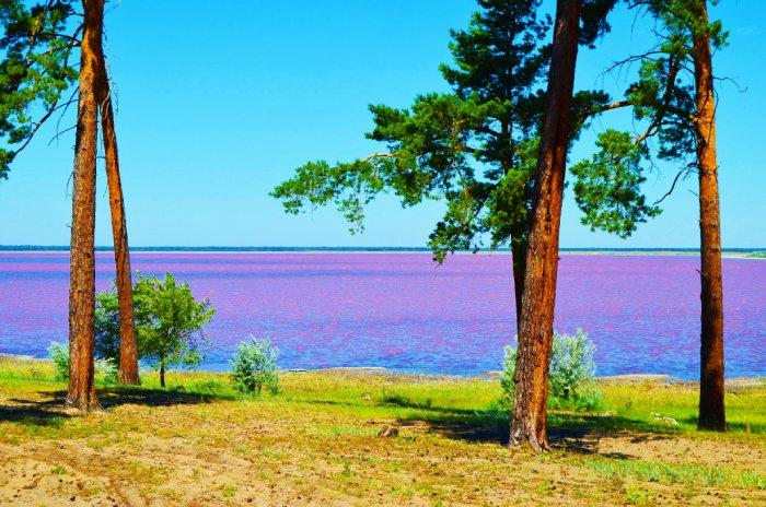 Малиновое озеро Алтайский край