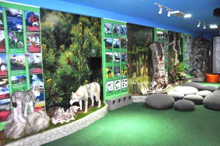 Музей природы Кроноцкого заповедника