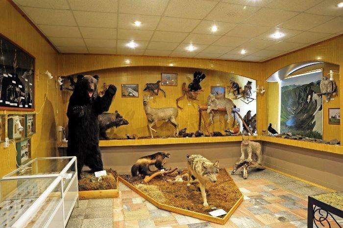 Музей природы. Байкальский заповедник