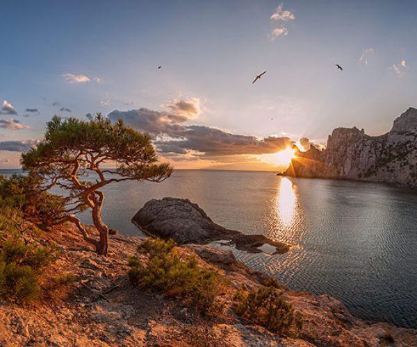 Новый Свет, Крым